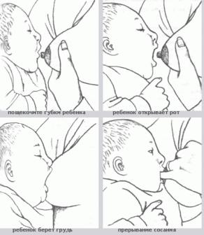 как правильно дать ребенку грудь