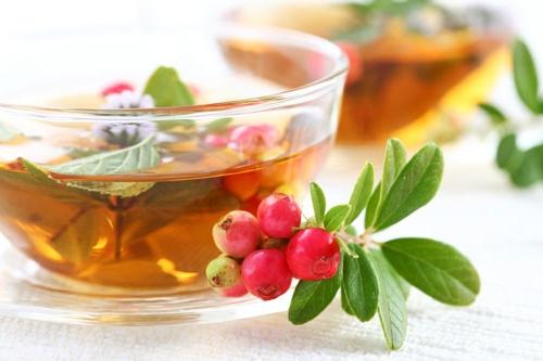 Чай для повышения лактации: приготовленные по рецептам или покупные