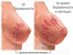 При кормлению грудью блоят соски