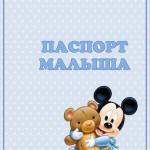 pasport-malysha-1