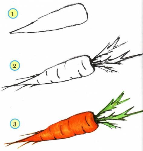 учимся рисовать морковь