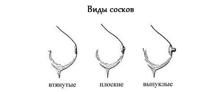 gotovim-grud-k-kormleniiu-vidy-soskov