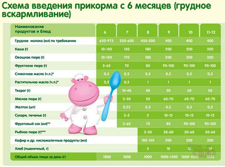 схема введения прикорма с 6 месяцев грудное вскармливание