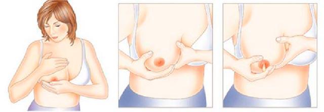 как-сцеживать-грудь