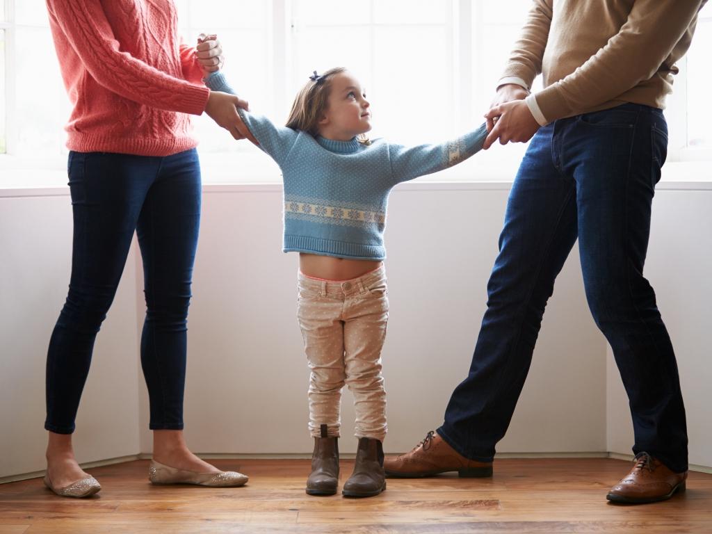 споры родителей