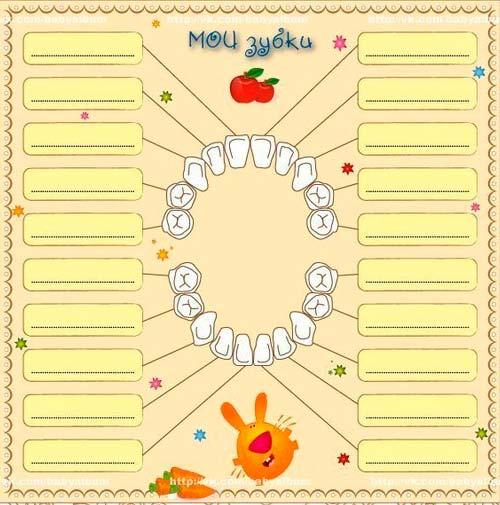 календарь прорезывания зубов у грудничка