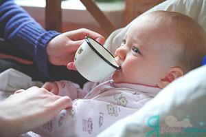 приучить пить из чашки