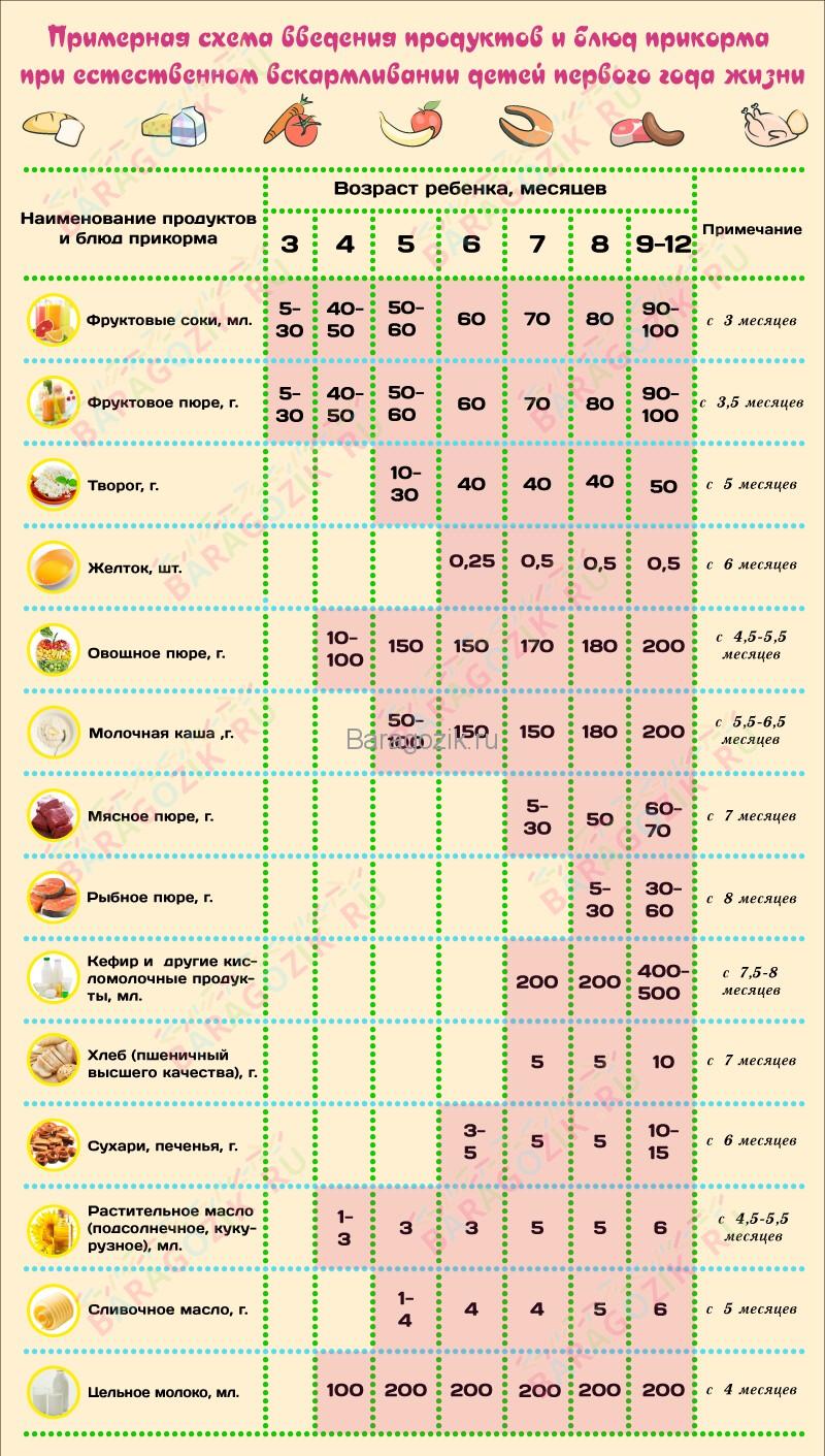 Примерная схема введения прикорма для ребенка на грудном вскармливании. (Клик для увеличения)