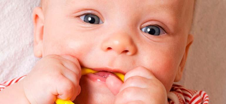 Прорезыватели для зубов