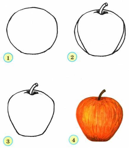 учимся рисовать яблоко