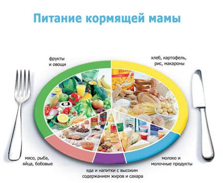 Питание кормящей матери в период ГВ