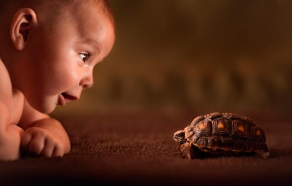 черепашка и ребенок