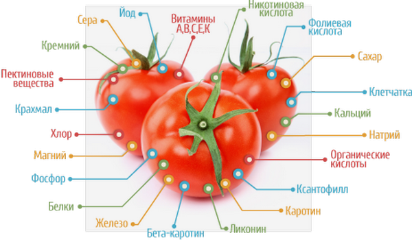 vitaminy-v-pomidorax