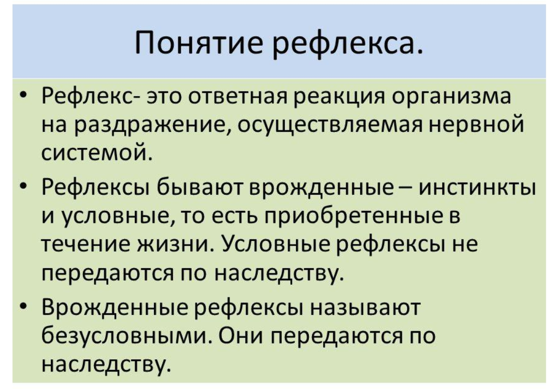 рефлексы - определение